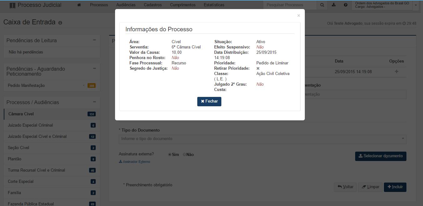 A imagem mostra a tela de informações adicionais do processo